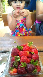 Julia at the strawberry farm
