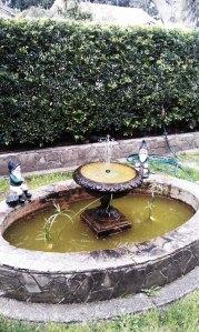 cettas garden 2