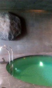 jan floatation pool