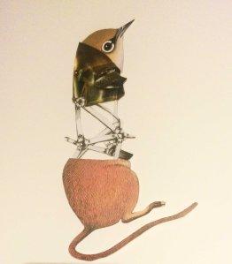 helmet bird