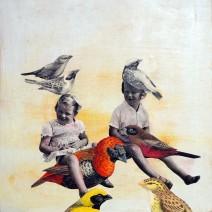 9 Bird Lovers