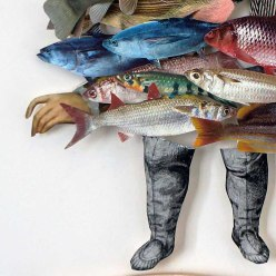 detail fish